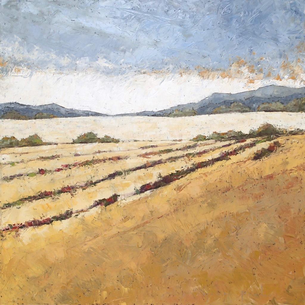 Vineyard 48x48